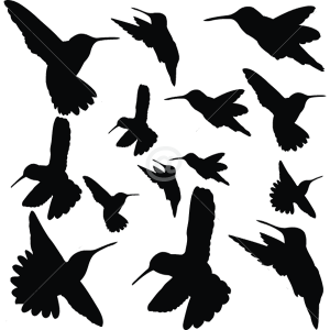B2502-Decor-animal-bird-sticker-wall