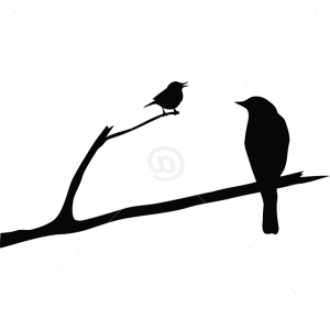 B2504-Decor-animal-bird-sticker-wall