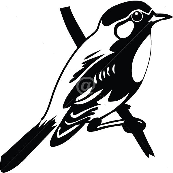 B2505-Decor-animal-bird-sticker-wall