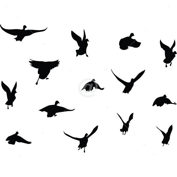 B2506-Decor-animal-bird-sticker-wall