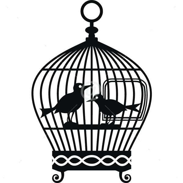 B2511-Decor-animal-bird-sticker-wall