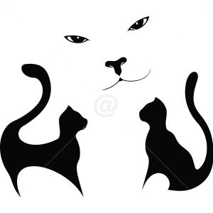 B3002-Decor-animal-butterfly-sticker-wall-cat