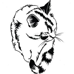 B3006-Decor-animal-butterfly-sticker-wall-cat