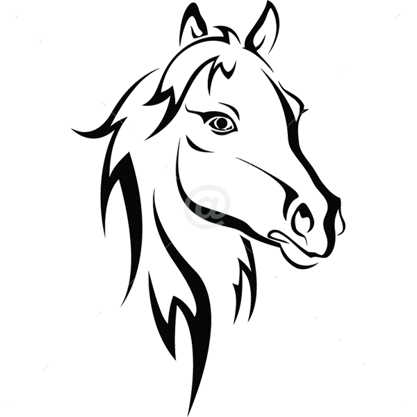 B3043-Decor-animal-Horse-sticker-wall-free