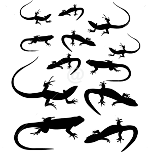 B3051-Decor-animal-lizard-sticker-wall-free