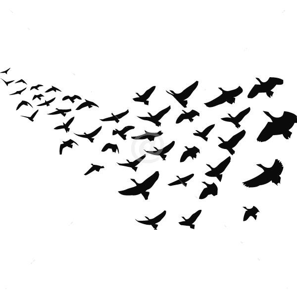 V4078-Design-stickers-Decals-Animal-Tree-Shopping-Bird